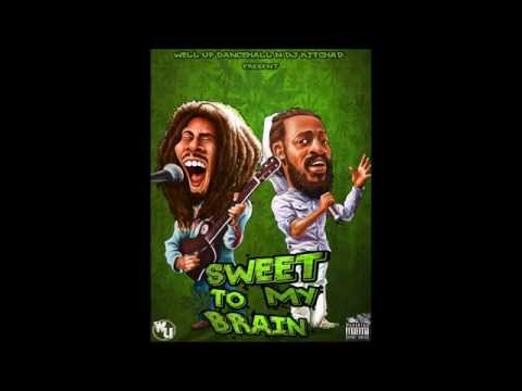 2014 Weed Smokers  Reggae Roots and Culture Mix Kartel Mavado Konshens Sizzla Capleton Busy Signal