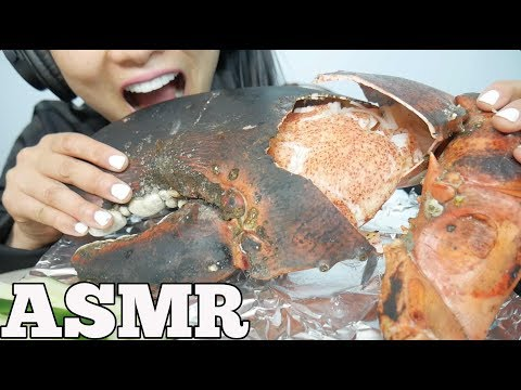 ASMR GIANT CLAW from a 15lb LOBSTER (EATING SOUNDS) NO TALKING   SAS-ASMR