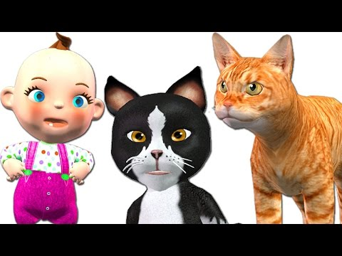 Baby Plays With Funny Cats Dance and Sings Three Little Kittens Nursery Rhymes For Kids Songs