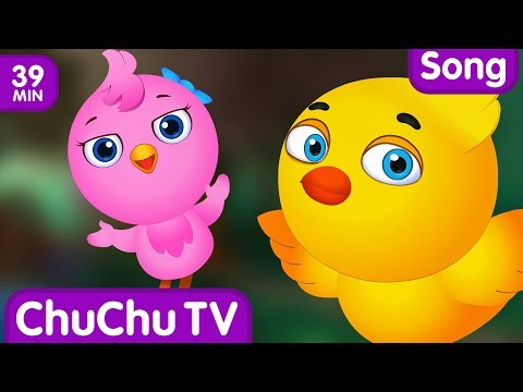 The Grow Grow Song   Original Educational Learning Songs & Nursery Rhymes for Kids by ChuChu TV