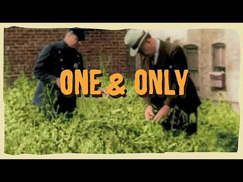 L'ENTOURLOOP Ft. Charlie P - One & Only (Official Video)