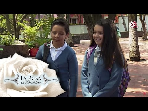 La muerte de Gustavo | Nuestro secreto | La Rosa de Guadalupe